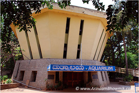 Government Aquarium - The Aquarists Society of Karnataka