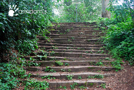 Steps to reach Amruth Sarovar - A beautiful water lake that brims with lucid water all the year round - Nandi Hills (Nandidurg), Chikkaballapur.